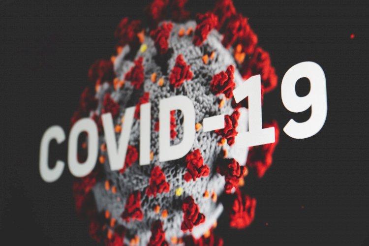 Tepat Satu Tahun, Begini Kilas Balik Kemunculan COVID-19 di Indonesia