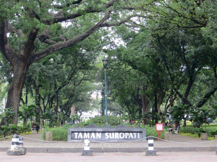 Berwisata ke Taman Suropati Jakarta, apa saja sih yang bisa dilakukan disana?